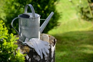 Clitheroe Garden Club - Watering can